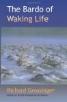 The Bardo of Waking Life - Richard Grossinger