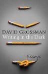 Writing In The Dark - David Grossman