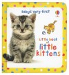 Baby's Very First Little Book of Kittens - Antonia Miller, Mary Cartwright, Katrina Fearn