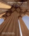 Judicial Process: Law, Courts, and Politics in the United States - David W. Neubauer