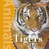 Tigers - Susan Schafer, Fay Robinson