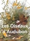 Les Oiseaux d'Audubon (French Edition) - John James Audubon