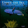 Under the Sea - Leighton R. Taylor, L. Taylor, Leighton R. Taylor