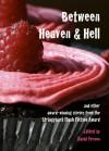 Between Heaven and Hell - David Vernon