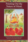 Pointing Out the Nature of Mind: Dzogchen Pith Instructions of Aro Yeshe Jungne - Palden Sherab