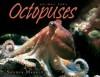Octopuses - Sandra Markle
