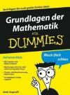 Grundlagen Der Mathematik Fur Dummies - Mark Zegarelli, Judith Muhr