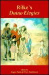 Rilke's Duino Elegies: Cambridge Readings - Roger Paulin, Peter Hutchinson