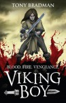 Viking Boy - Tony Bradman, Pierre-Denis Goux