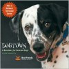 Dogtown: A Sanctuary for Rescued Dogs - Bob Somerville