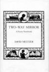 Two Way Mirror: A Poetry Notebook - David Meltzer