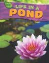 Life in a Pond - Adam Hibbert