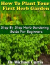 How To Plant Your First Herb Garden - Michael Curtis