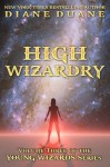 High Wizardry, International Edition (Young Wizards) - Diane Duane