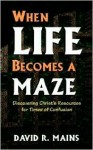 When Life Becomes A Maze - David R. Mains
