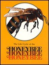 The Honeybee (Life Cycles Books) - Paula Z. Hogan