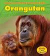 Orangutan - Anita Ganeri