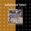 Andalusian Spirit - Audrey Pavia