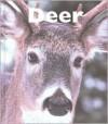 Deer - Mary Berendes