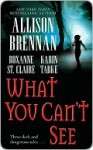 What You Can't See (Includes: Bullet Catcher, #8; Seven Deadly Sins Prequel) - Allison Brennan, Roxanne St. Claire, Karin Tabke