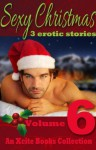 Sexy Christmas Stories - Volume Six - an Xcite Books Collection - Jodie Davis, Landon Dixon, Roxanne Rhoads