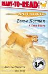 Brave Norman : A True Story - Andrew Clements, Ellen Beier