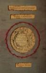 Basal Ganglia - Matthew Revert