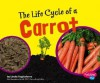 The Life Cycle of a Carrot - Linda Tagliaferro