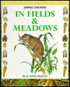 In Fields and Meadows - Tessa Paul