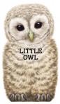 Little Owl - Giovanni Caviezel