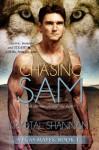 Chasing Sam - Krystal Shannan