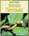 Brown Treesnake - Barbara A. Somervill