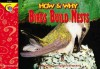 How and Why Birds Build Nests (How and Why Series) - Elaine Pascoe, Joel Kupperstein, Dwight Kuhn