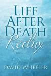 Life After Death Redux - David Wheeler