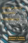 Tinder Box Criminal Aggression: Neuropsychology, Demography, Phenomenology - James E. Hennessy, Nathaniel Pallone