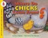 Where Do Chicks Come From? - Amy E. Sklansky, Pamela Paparone, Pam Paparone
