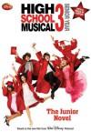 Disney High School Musical 3 Senior Year: The Junior Novel - N.B. Grace