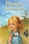Possum Summer - Jen K. Blom
