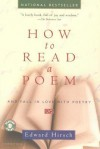 How to Read a Poem: And Fall in Love with Poetry - Edward Hirsch