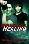 Sexual Healing - Shawn Bailey