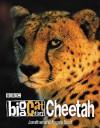 Big Cat Diary: Cheetah - Jonathan Scott, Angie Scott