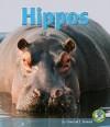 Hippos - Conrad J. Storad