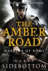 The Amber Road: Warrior of Rome: Book 6 - Harry Sidebottom