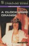 A Guide To A Clockwork Orange - Sean Sheehan