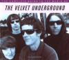 The Complete Guide to the Music of the Velvet Underground - Peter Hogan, John Robertson
