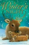 A Winter's Night. [Illustrated by Alison Edgson] - Edgson, Alison Edgson