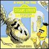 A Visit to the Sesame Street Museum - Liza Alexander