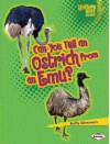 Can You Tell an Ostrich from an Emu? - Buffy Silverman