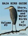 BAJA BIRD GUIDE 3 - John Spencer