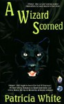 A Wizard Scorned - Patricia Lucas White